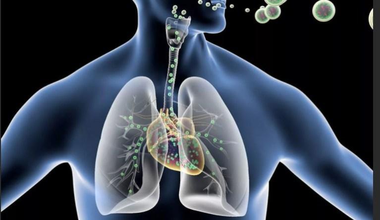 Что такое дыхание. Принципы работы Пранаямы