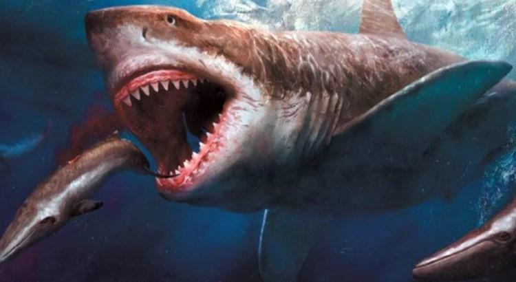 Морские чудовища реально существуют в океане