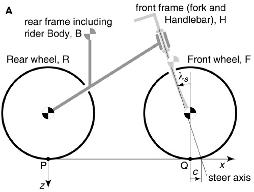 How do bicycles balance themselves?