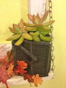 ez-swap-succulent-pot2