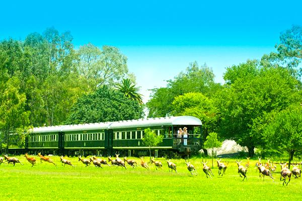 06【易遊網】世界十大豪華列車-非洲之傲