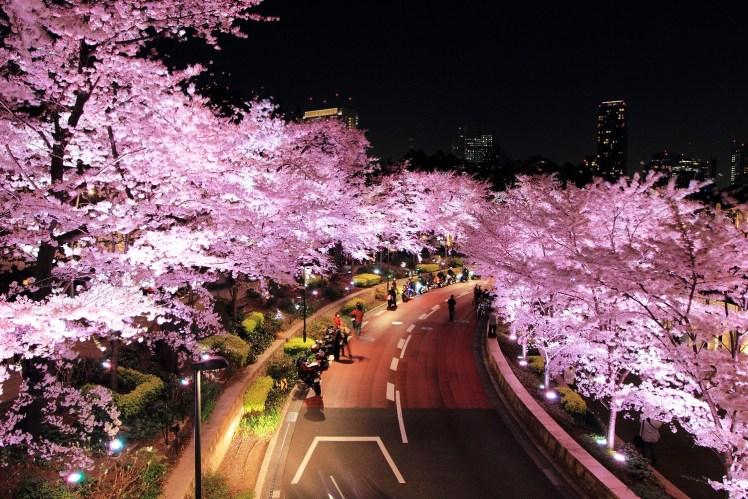 東京中城.jpg