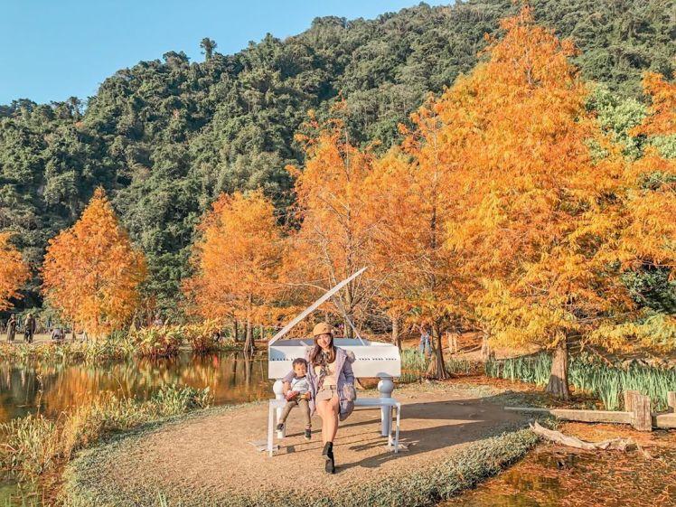 candies_ku • 南庄雲水度假森林 Cloudland Resort