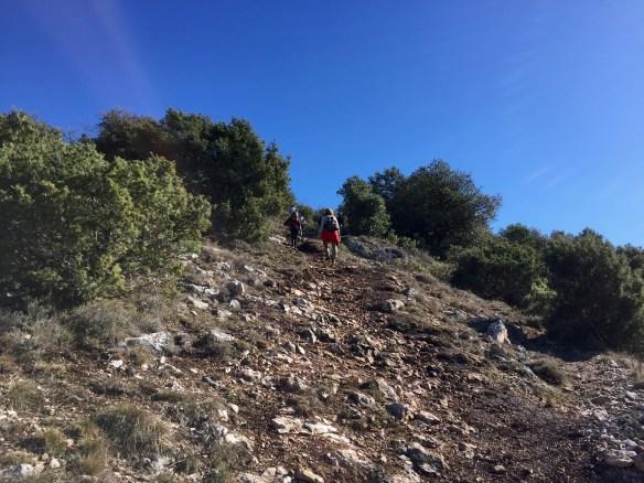 Sentier vers le baou de la Gaude