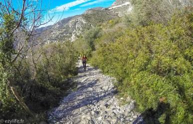 Trail Eze 2015-25
