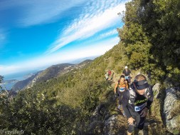 Trail Eze 2015