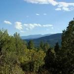 Greenhorn Mountain through trees