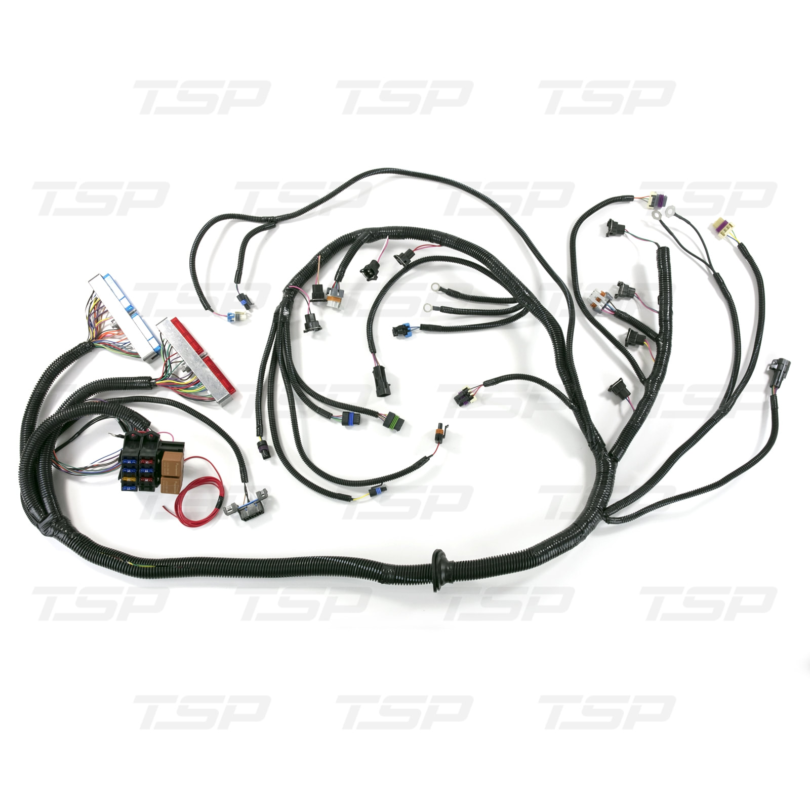 Standalone Wiring Harness For Drive By Cable Ls1 With T56