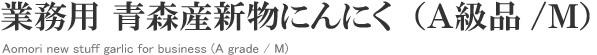 業務用 青森産新物にんにく(A級品/M)