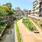 【古石場川親水公園】牡丹町~古石場にかけて続く、じゃぶじゃぶ池のある親水公園