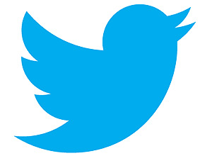 Twitter passa a enviar publicidade direcionada