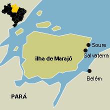 Resultado de imagem para ilha de marajó