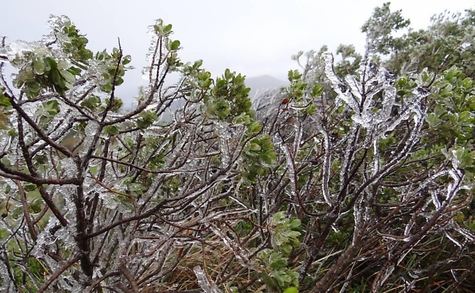 Temperaturas despencam na Serra Catarinense