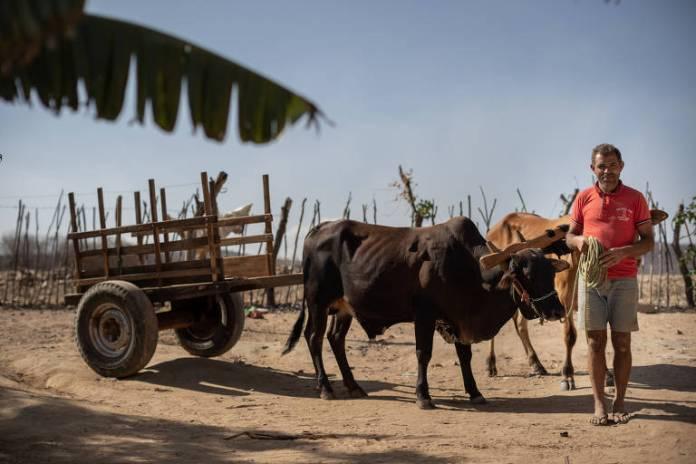 O vaqueiro Expedito Porfírio da Silva, 44 anos, que mora no sertão pernambucano