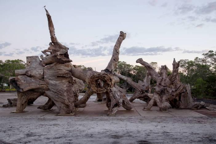"""""""Raiz"""", de Ai Weiwei"""