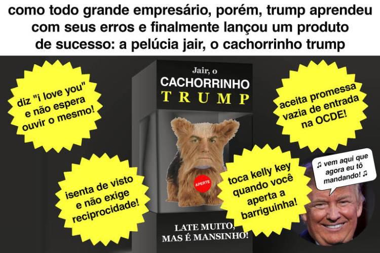 caixa de brinquedo com uma cachorro de pelúcia dentro; sua cara é a mesma que a do presidente jair bolsonaro