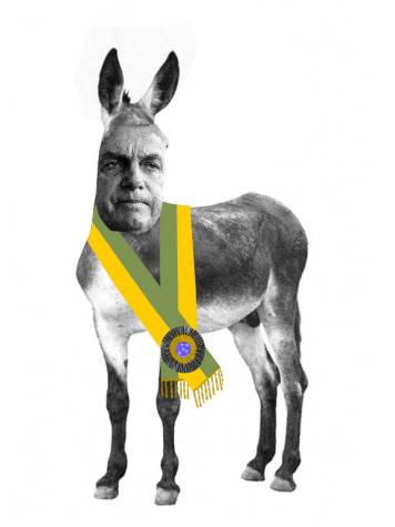 asno com cabeça do Jair Bolsonaro