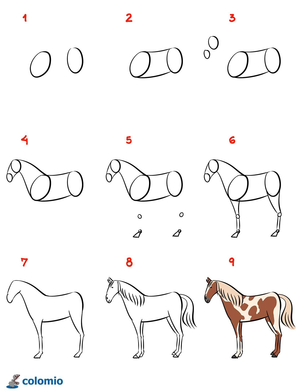 Ausmalbilder Pferde kostenlos » Malvorlage Pferd