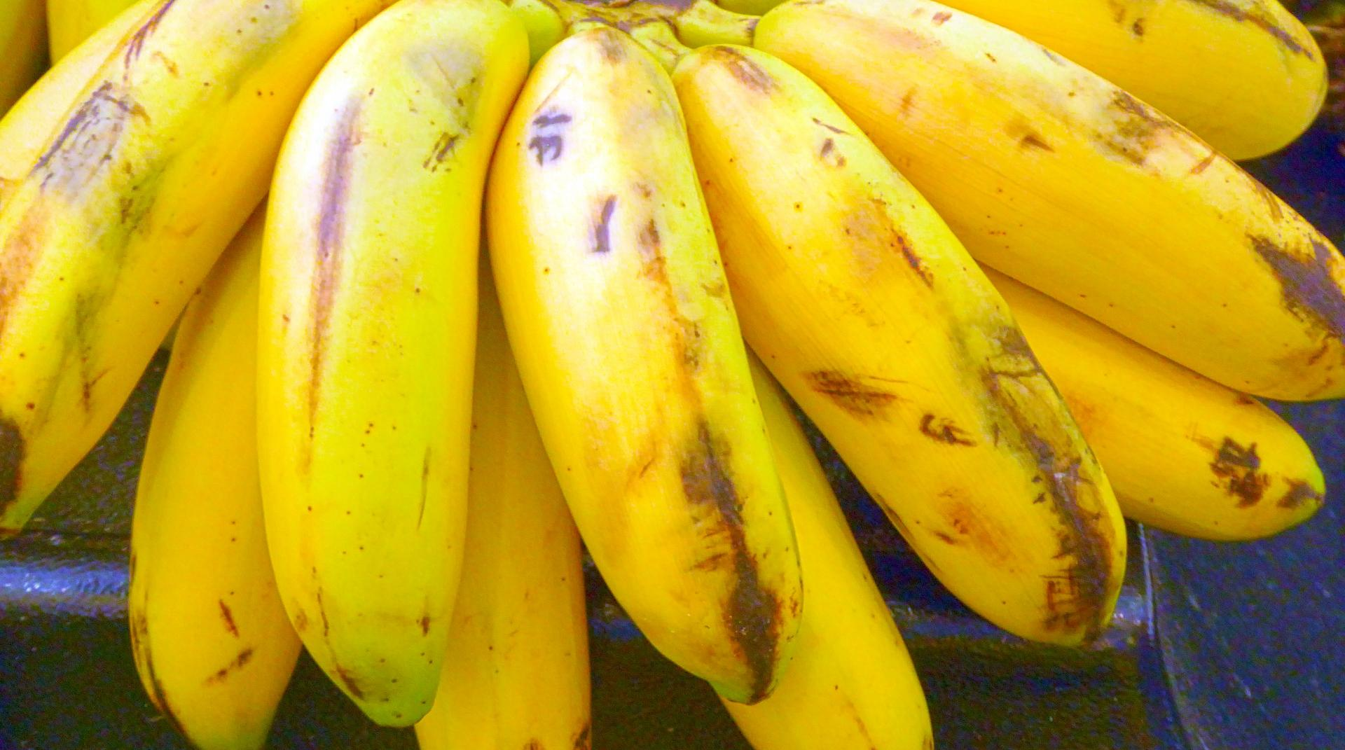 Bananer Kan Bli Morgondagens Bildelar Motor Magasinet