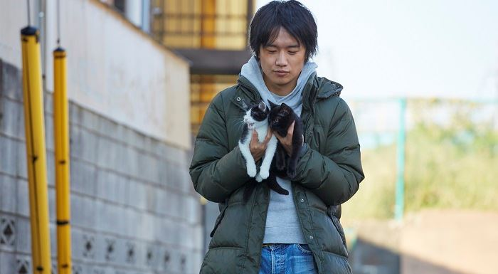live action, review, neko nanka yondemo konai
