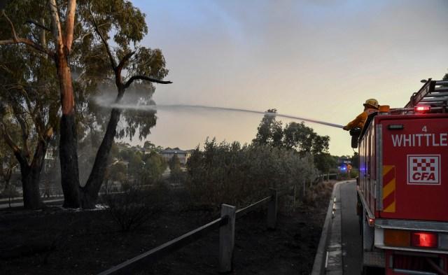 Algunos de los incendios son de tal intensidad que cientos de bomberos han tenido que retroceder fuera de la línea de fuego de unos mil kilómetros.
