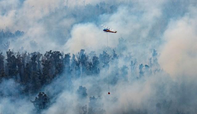 Las autoridades de Melbourne, la segunda ciudad más poblada del país, declararon el estado de emergencia por fuego e instaron a los residentes a