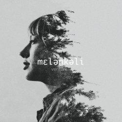 Verture - Melenkeli artwork