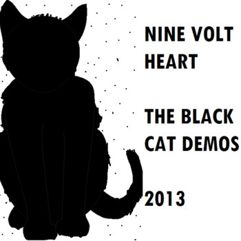 The Black Cat Demos 2013 cover art