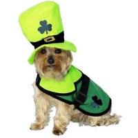 When Irish Dogs Are Smiling: 12 Fun St. Patrick's Day Dog