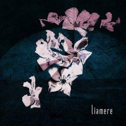 Liamere artwork