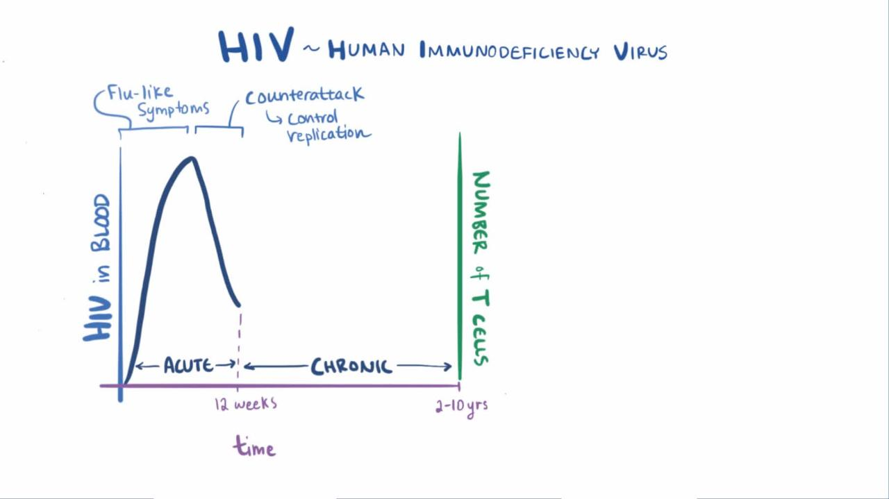 hight resolution of overview of human immunodeficiency virus hiv