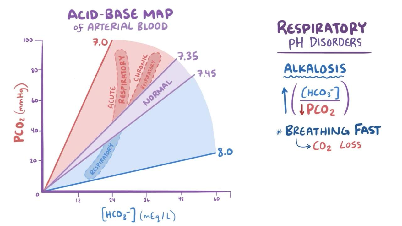 hight resolution of overview of acid base maps and compensatory mechanisms