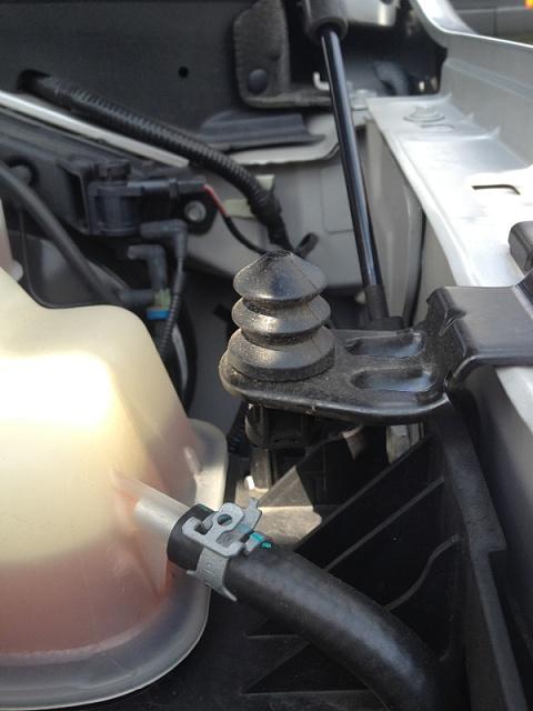 2012 Ford Focus Horn Location : focus, location, Randomly, Starts, Honking, Forum, Community, Truck