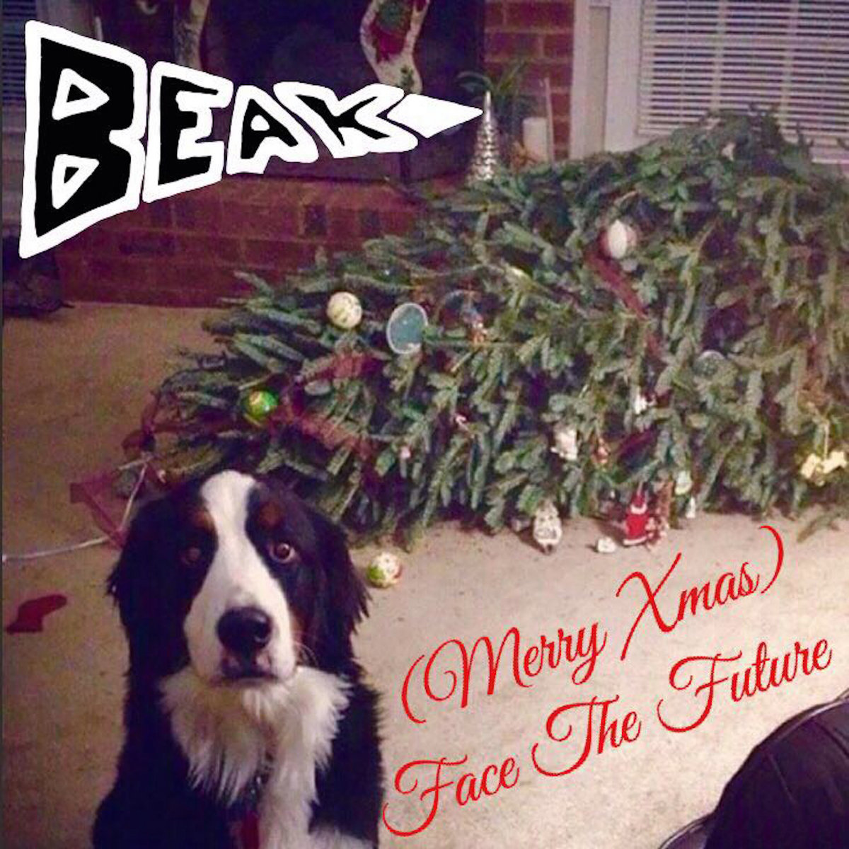 merry xmas face the