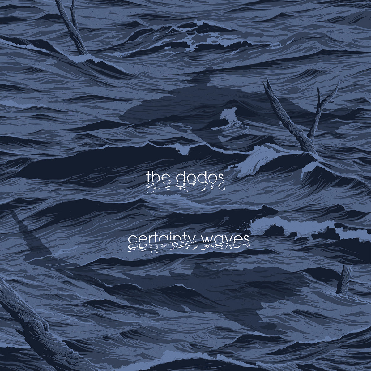 certainty waves the dodos