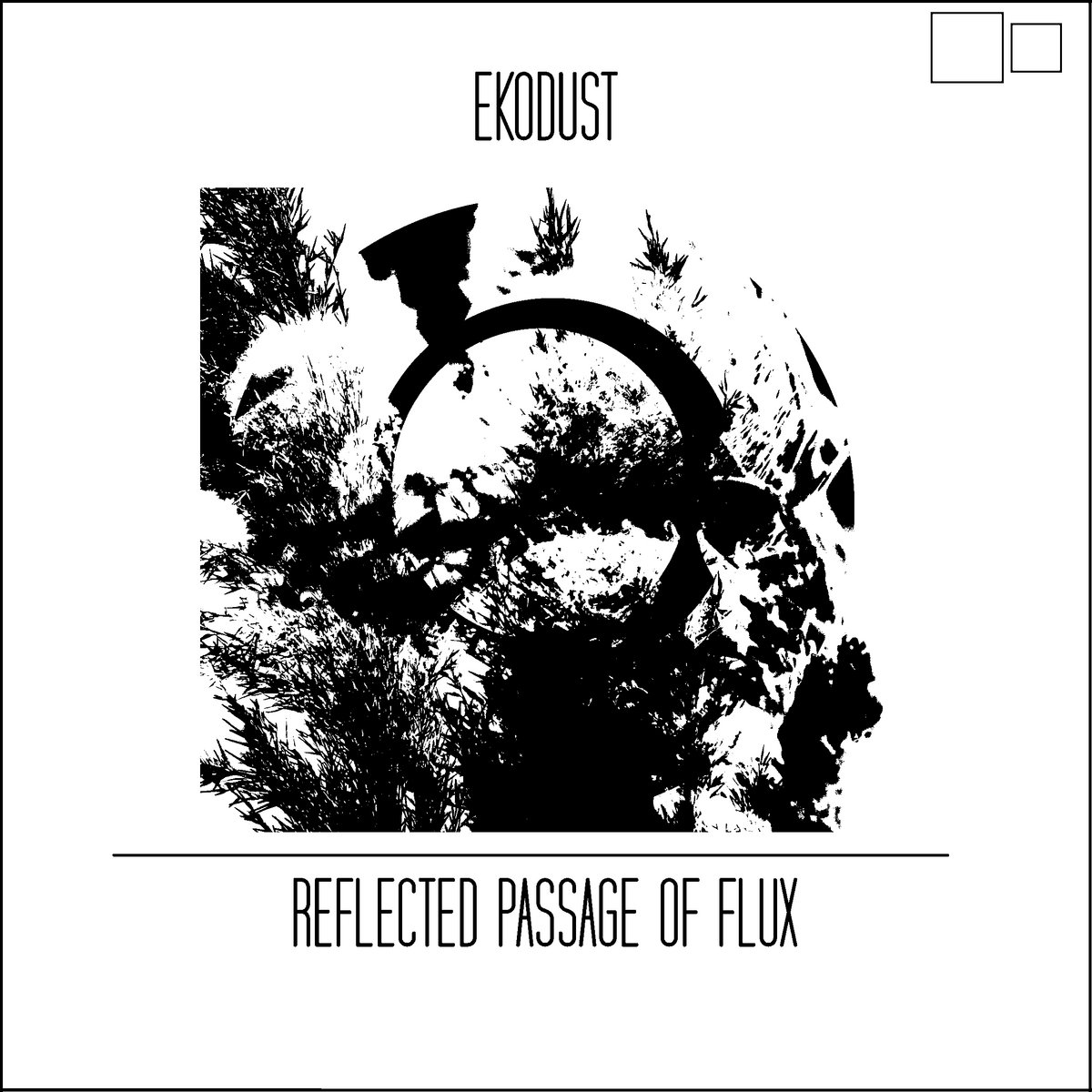 Ekodust – Reflected Passage of Flux