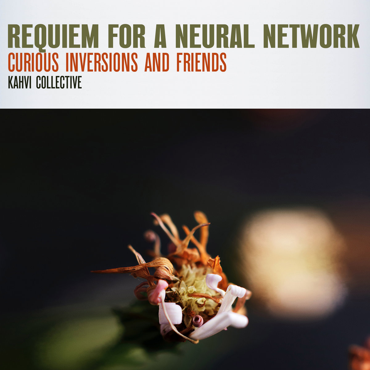 Curious Inversions and Friends – Requiem for a Neural Network