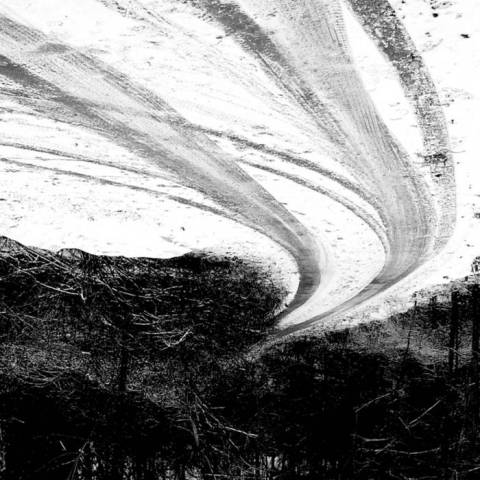 Drone Forest – Deteriorated Collection