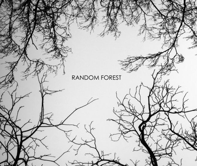 From Random Forest By Random Forest