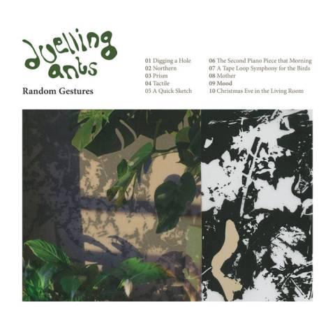 Duelling Ants – Random Gestures
