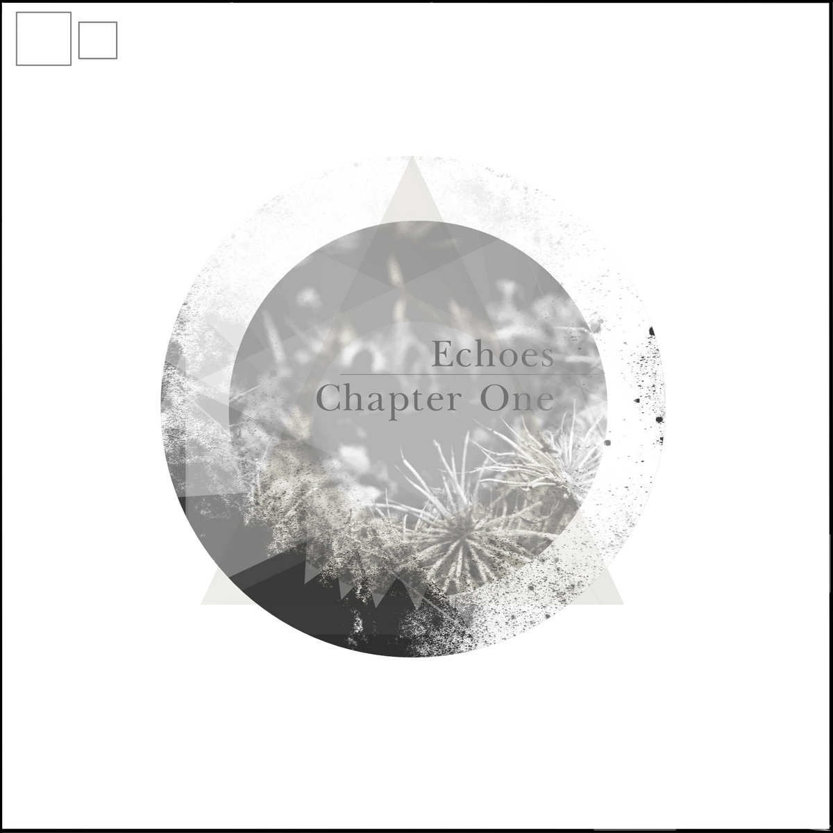 Echoes Chapter One – Various Artists