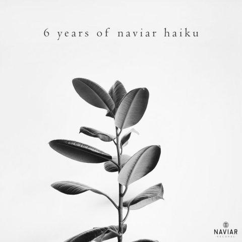 Various Artist – 6 years of naviar haiku