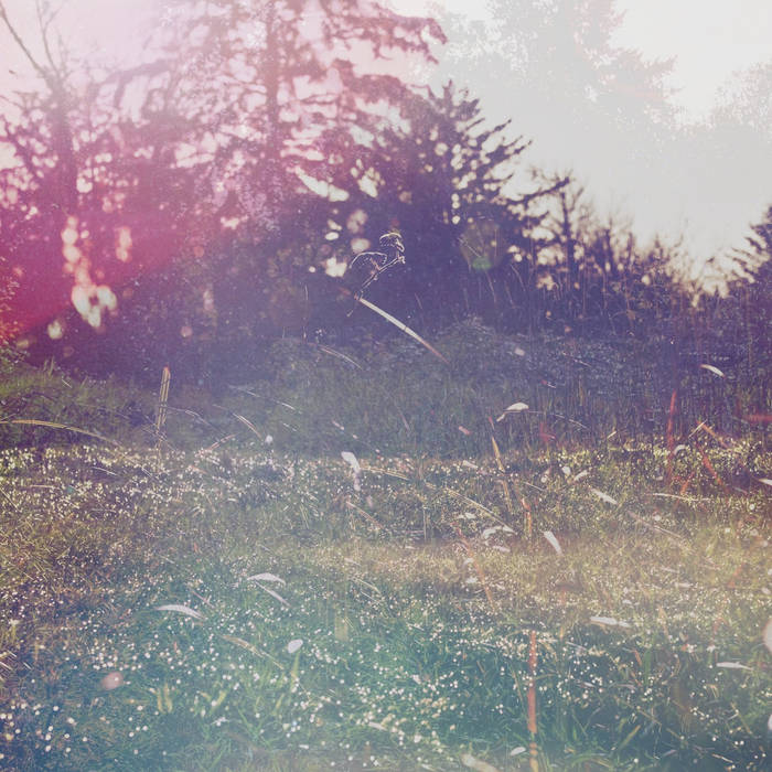 Purl - Childhood Dreams [ETNLR09]