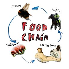 Wolf Food Chain Diagram 3 Phase Motor Wiring 6 Wire Picture Of
