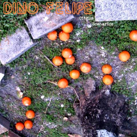 Dino Felipe – Citrus Scenarios