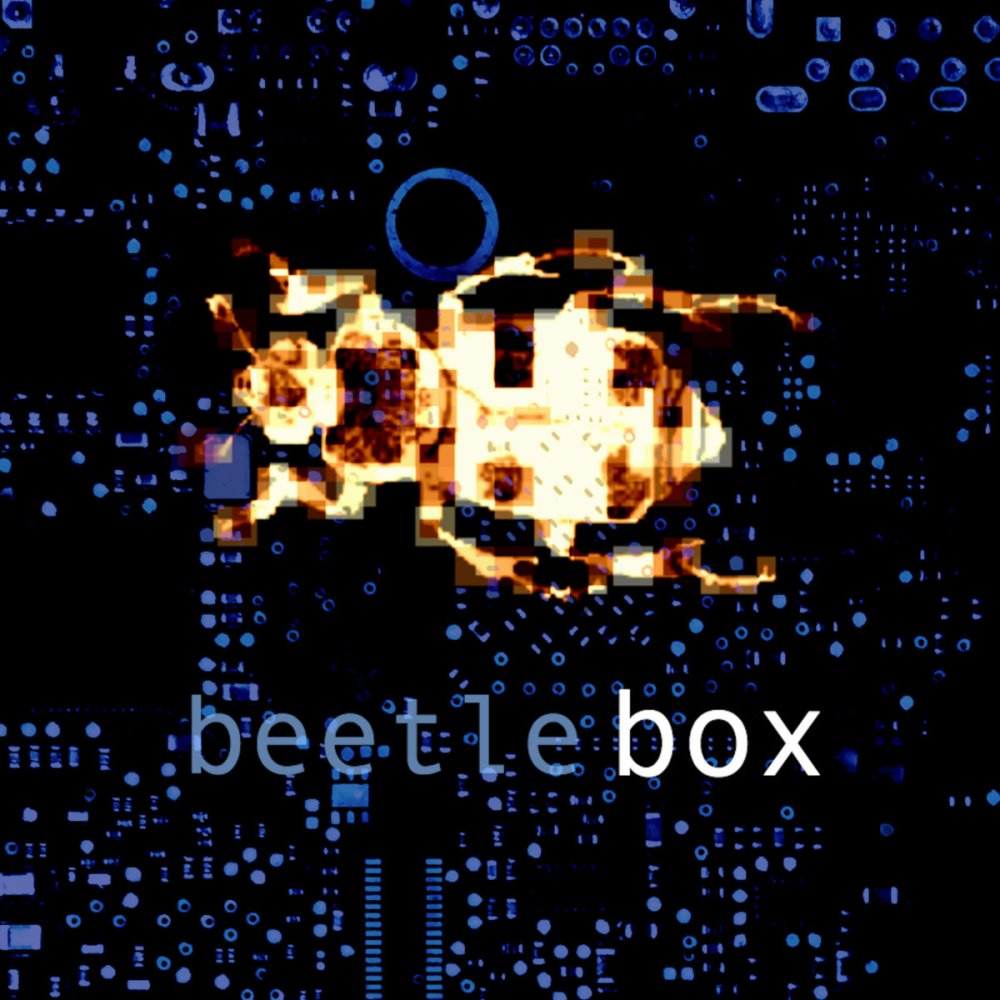 medium resolution of by beetle box