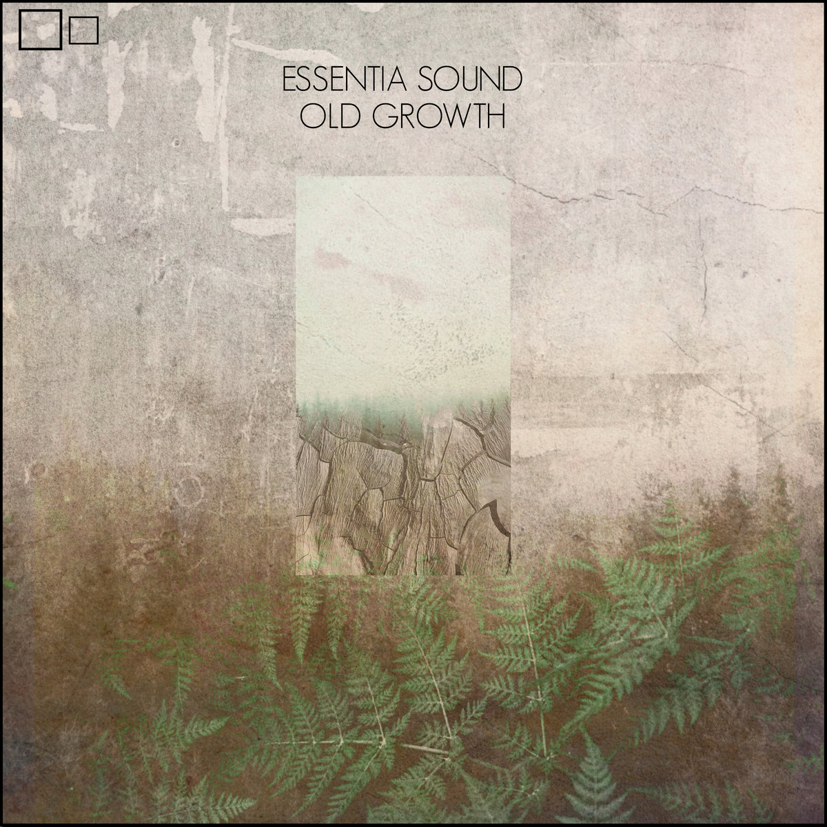 Essentia Sound – Old Growth