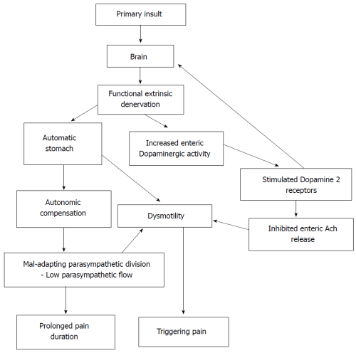 small resolution of figure 1 development and consequences of automatic stomach in abdominal pain predominant functional gastrointestinal disorders according to the proposed