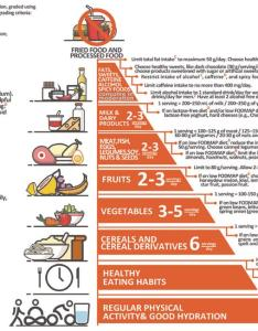 Figure irritable bowel syndrome food pyramid the was built upon current dietary guidelines and existing literature also diet in what to recommend not rh wjgnet