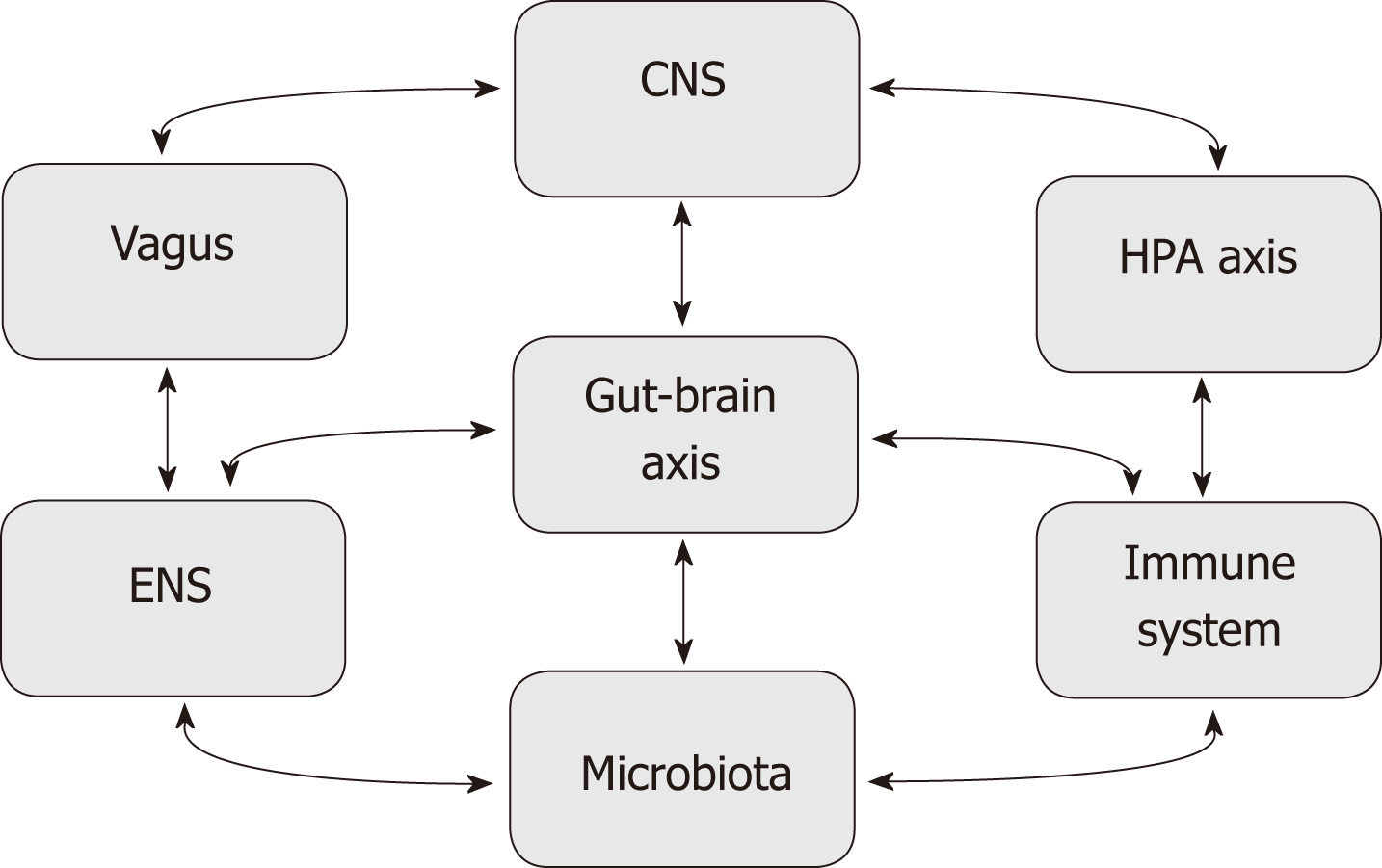 hight resolution of figure 2 schematic representation of different factors modulating the gut brain axis the microbiota and central nervous system interact in a bidirectional
